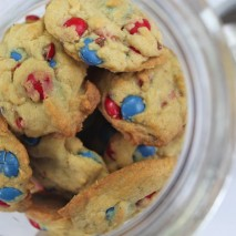 The World's Best M&M Cookies {A Recipe}