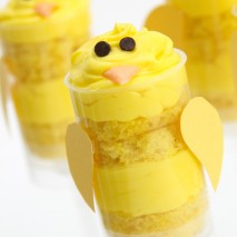 Spring Chick Push-Up Pops