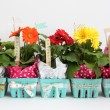 Flower Berry Basket Gifts-for Teacher Appreciation Day or Mother's Day