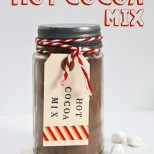 The easiest DIY Hot Cocoa Mix and uses only 2 ingredients! This stuff is so good!