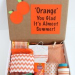 Happy Mail: Orange You Glad It's Almost Summer Gift Idea