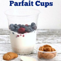 On the Go Snack Idea: Yogurt Parfait Cups