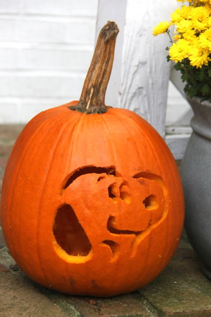 picture relating to Peanuts Pumpkin Printable Carving Patterns named The Peanuts Video clip Carved Snoopy Pumpkin! - Smashed Peas