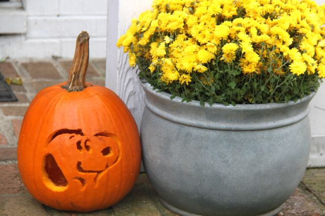 photograph relating to Peanuts Pumpkin Printable Carving Patterns titled The Peanuts Video clip Carved Snoopy Pumpkin! - Smashed Peas