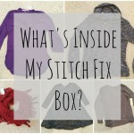 Another What's Inside My Stitch Fix Box?