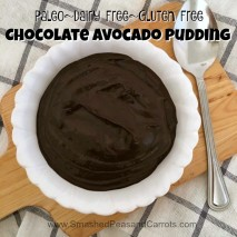 Paleo Chocolate Avocado Pudding