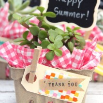 Succulent Berry Basket Gift Idea