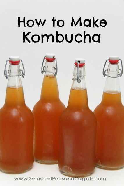 How to Make Kombucha: A Step by Step Guide // SmashedPeasandCarrots.com